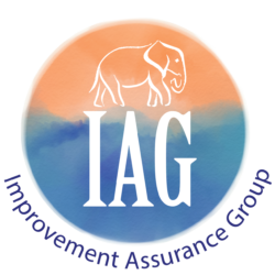 Improvement Assurance Group